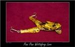 Paw Paw Wottafrog