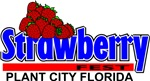 Strawberry Plant City