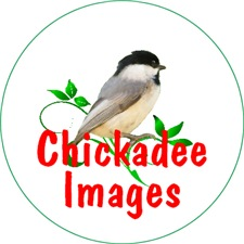 <b>CHICKADEE LOVER GIFTS</b>
