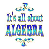 <b>ABOUT ALGEBRA</b>