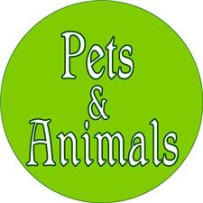 <b>PETS & ANIMALS</b>