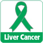 Liver Cancer Shirts & Awareness Gifts