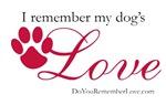 I Remember My Dog's Love