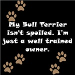 Well Trained Bull Terrier Owner