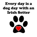 Irish Setter Dog Day