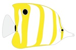 Yellow Stripe Needle Nose Fish