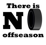 No Hockey Offseason