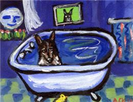 Australian Cattle Dog Bath Design