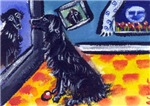 FLAT COATED RETRIEVER TV