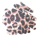 Leopard Print Abstract