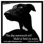 Dog Represents