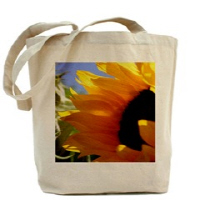 Earth Friendly Reusable Totes
