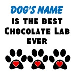 Best Chocolate Lab Ever