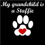 Staffie Grandchild