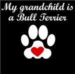 Bull Terrier Grandchild