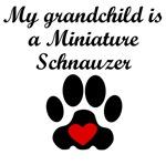 Miniature Schnauzer Grandchild