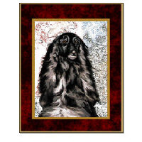Pretty Afghan Hound Posters