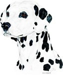 Dashing Dalmatian, Dal Dog  Products & Gifts