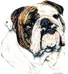 Bulldog Portrait Dog Designs