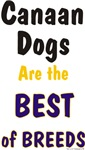 Canaan Dogs Best of Breed Unique Gifts & Products