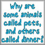 Why are some animals called pets, and others...