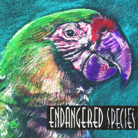 Endangered Species Collection