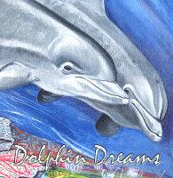 Dolphin Dreams Collection