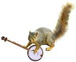 Squirrel with Banjo