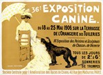 Dogs, Vintage Poster