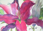 Fine Art Prints and Giclees