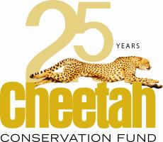 CCF 25th Anniversary