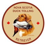 Toller and Duck Badge Design