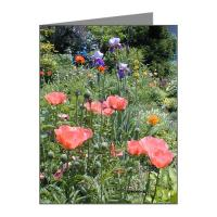 Floral and Scenic Note Cards