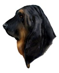Black & Tan Bloodhound items with this design