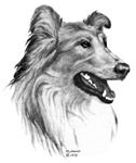Rough Collie items with this design