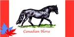 Canadian Horse items with this design
