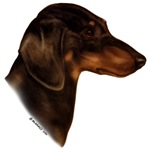Min. Smooth Dachshund items with liver/tan design