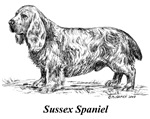 Sussex Spaniel items with this design