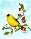 Goldfinch items