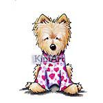 PJ Norwich Terrier