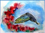 Hummingbird, art