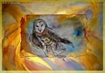 barn owl, bird art