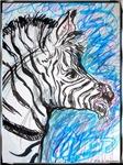 Zebra, wildlife art
