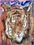 Tiger, wildlife art,