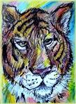 Tiger! Wildlife art!