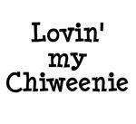 Chiweenie - Lovin' My Chiweenie
