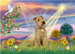 CLOUD ANGEL<br> & Lakeland Terrier