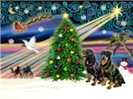 CHRISTMAS MAGIC<br>With Two Rottweilers