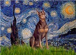 STARRY NIGHT<br>& Red Doberman Pinscher