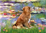 LILIES<br>& Nova Scotia Duck Tolling Retriever